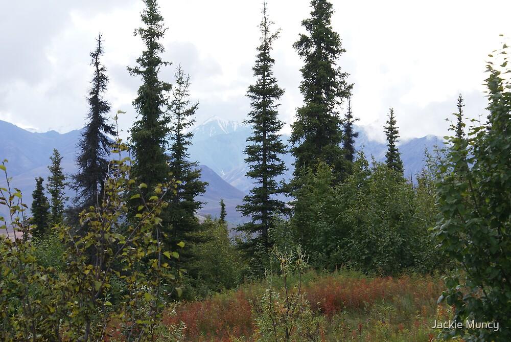 My Alaska by Jackie Muncy