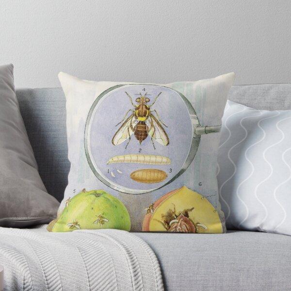 Queensland Fruit Fly Throw Pillow