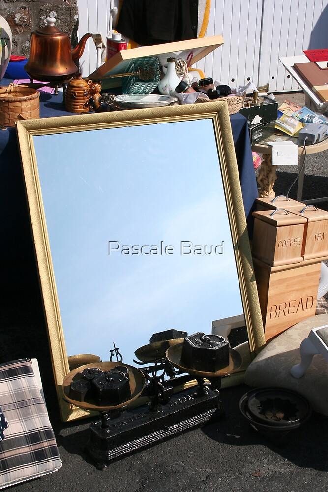 Mirror ! Tell me who is the most beautiful ? by Pascale Baud
