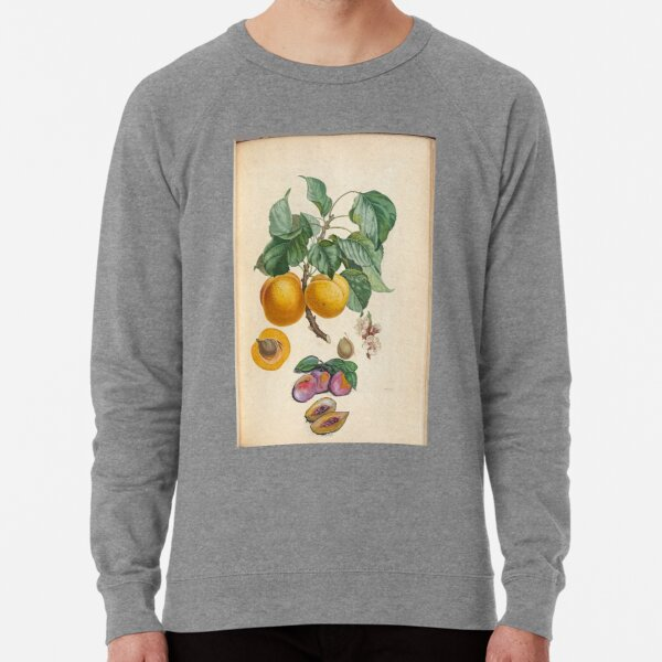 Sweet Fruit Lightweight Sweatshirt