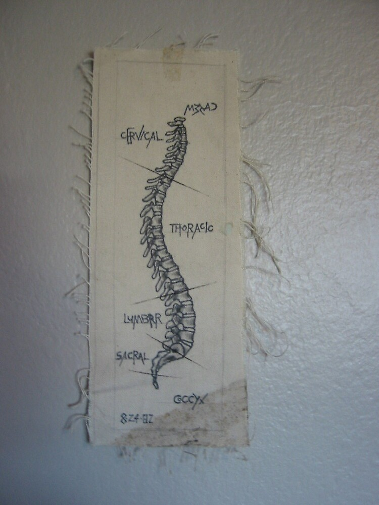 spine by m32ad