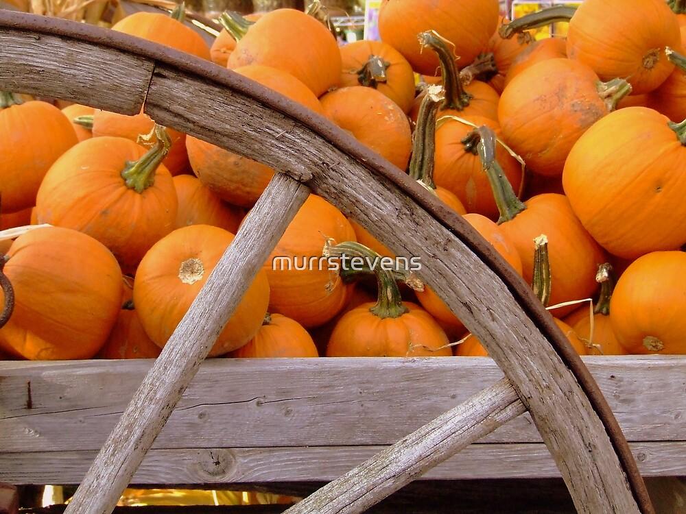 Pumpkin Wagon by murrstevens