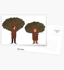 DEH- Tree Bros  Postcards