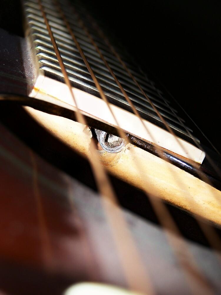 Guitar Strings by pamela11