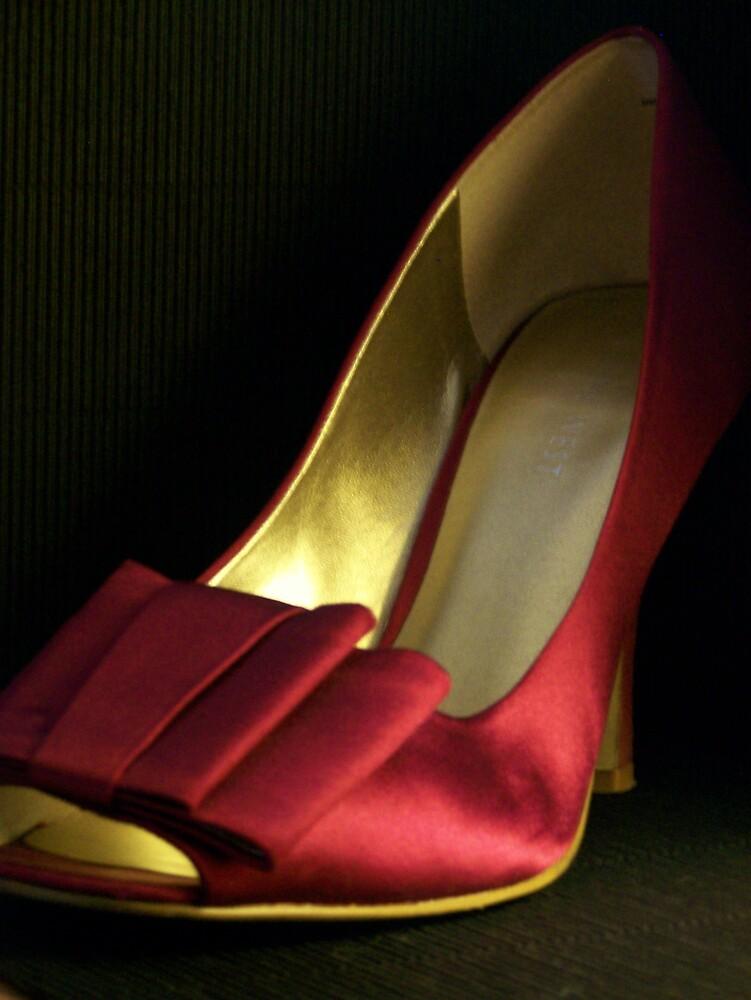 Satin Shoe by pamela11