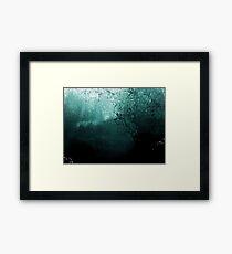 #1137  -  Submerged Framed Print