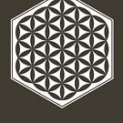 Hex Filled Flower of Life (dark background) by hexagrahamaton