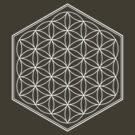 Hex Outline Flower of Life (dark background) by hexagrahamaton