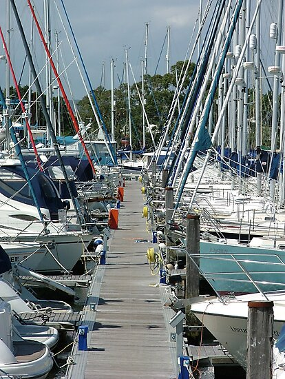 Chichester Marina by Charlotte Jarvis