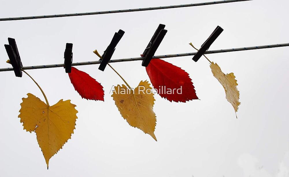 Hung to dry.. by Alain Robillard