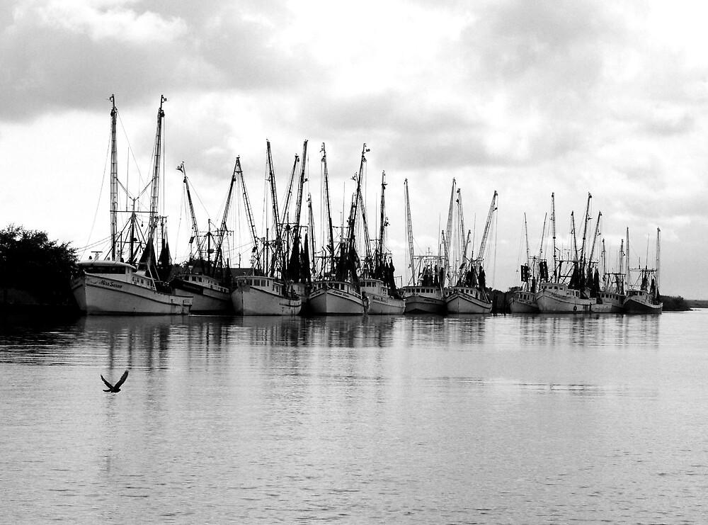 Darian Fleet by Glenn Grossman