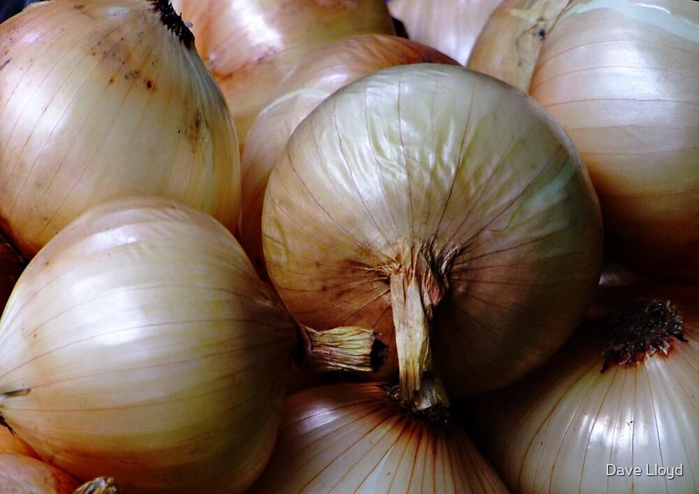 Onions by Dave Lloyd