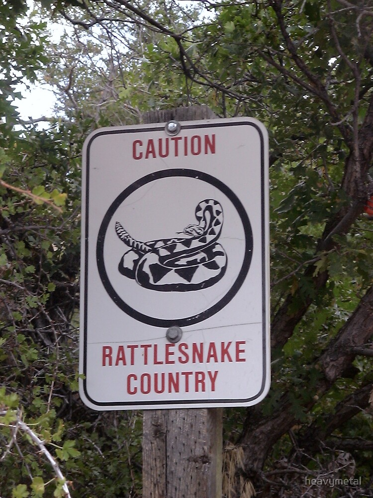 Snakes!! by heavymetal