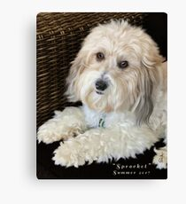 """Sprocket"" Canvas Print"
