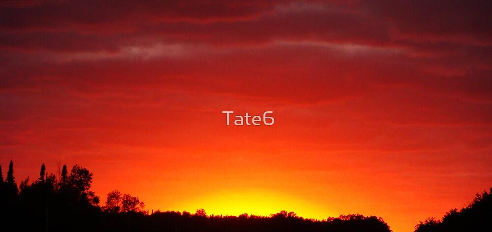 Mistaken  by Tate6