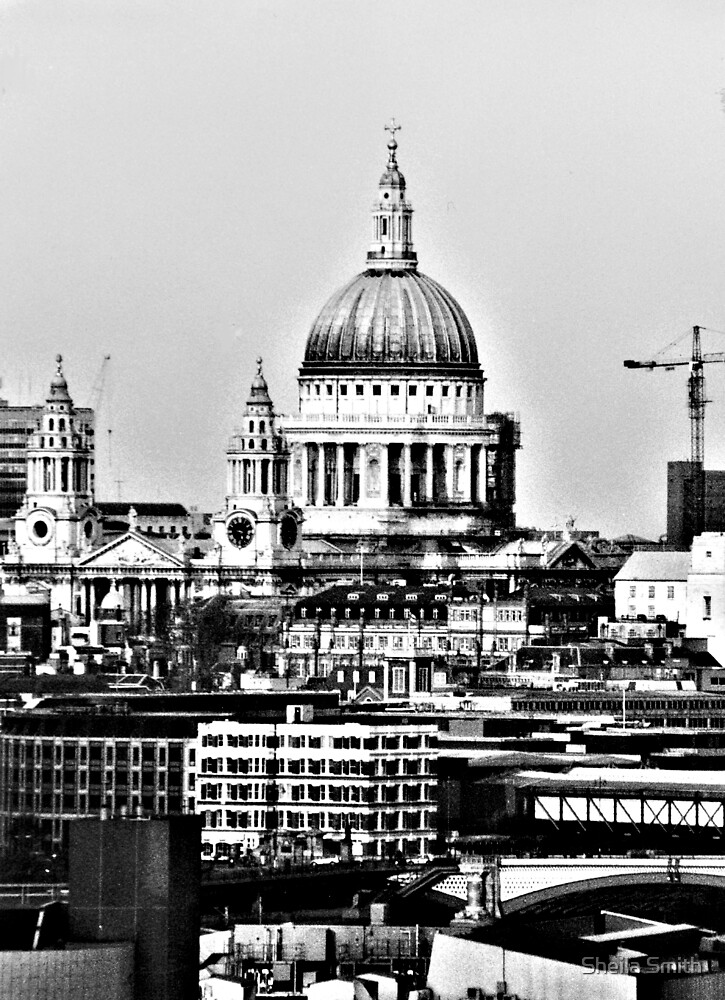St Paul's Cathedral by Sheila Smith