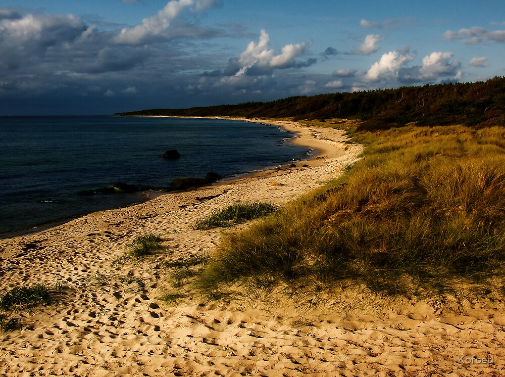 The Beach by Kofoed