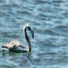 Fledgling Flamingo At Sea Watercolor by taiche