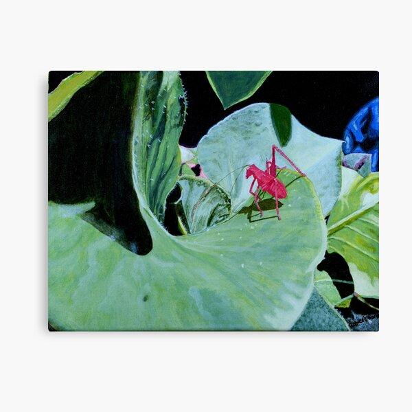 I am, a Pink Grasshopper Canvas Print