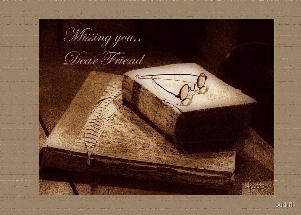Missing you dear friend by budrfli