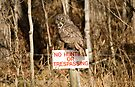 No Hunting!! (With Exceptions...) by EchoNorth