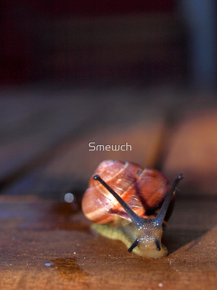 I Come in Peace by Smewch