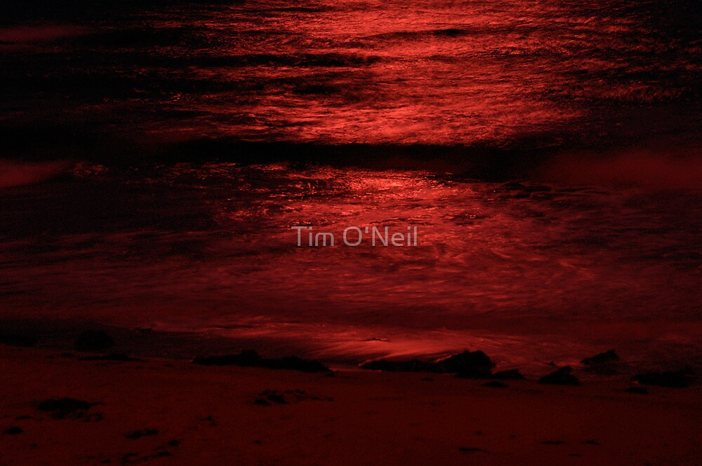 Red Sea by Tim O'Neil