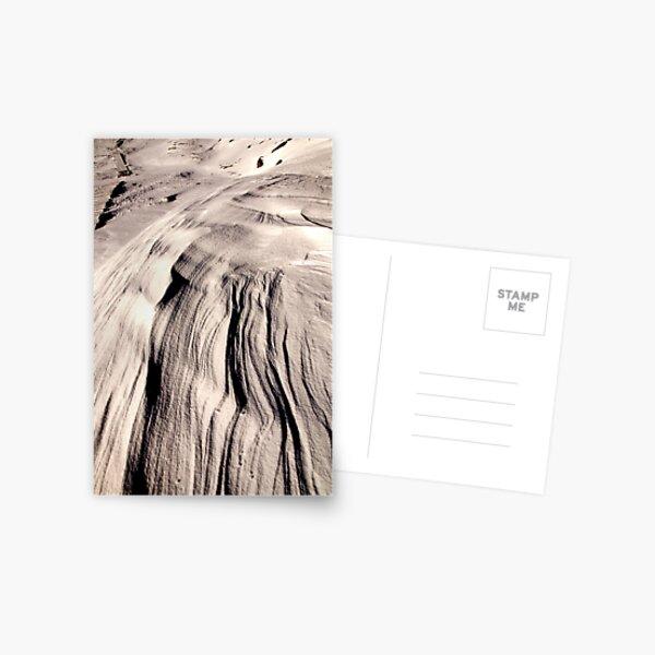 Frozen Wind Postcard
