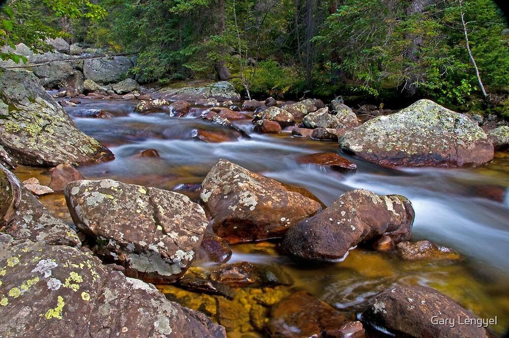 Along the Stream by Gary Lengyel