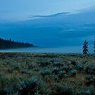 Misty Valley by Gary Lengyel