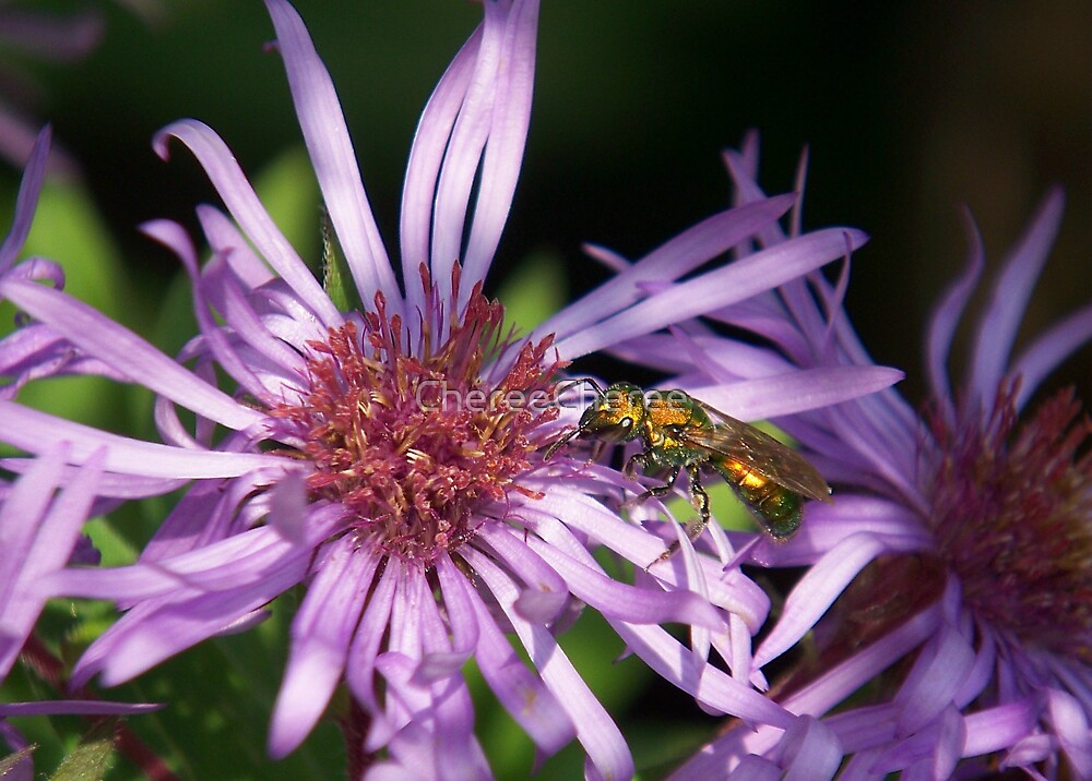 Green Metallic Bee* by ChereeCheree