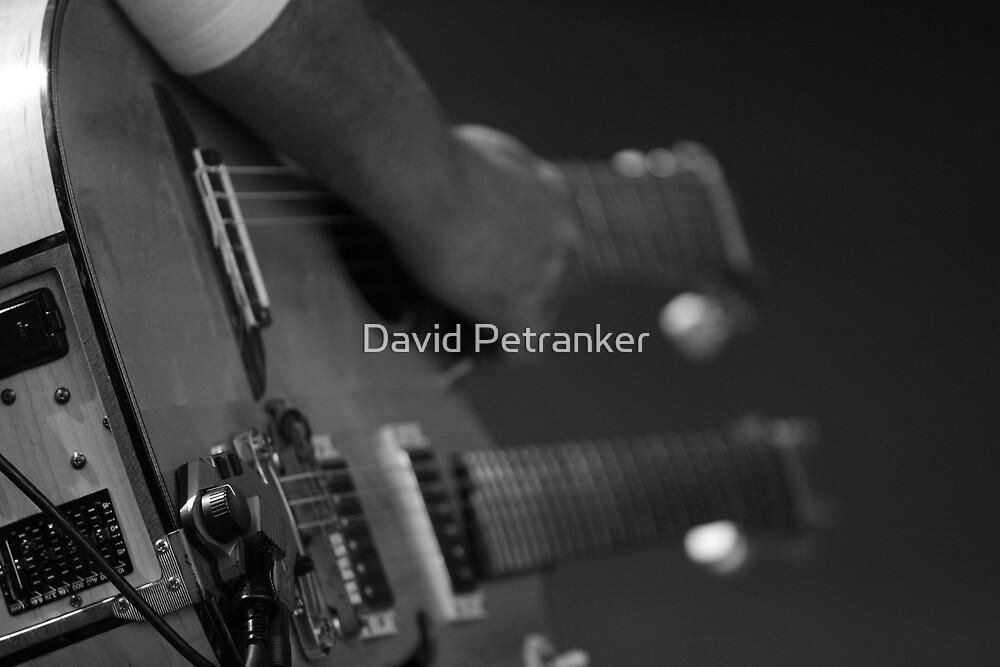 Double Guitar by David Petranker