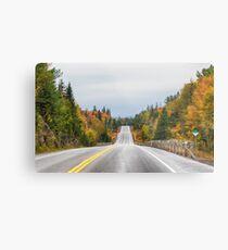 Algonquin park on Highway 60 in Autumn Metal Print