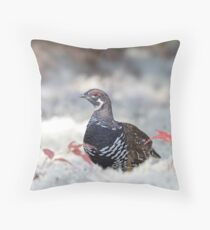 Spruce Grouse male in lichen in Algonquin Park Throw Pillow