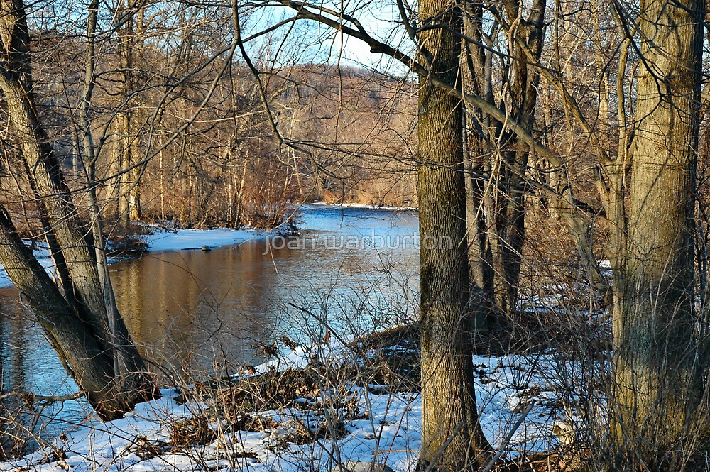 Ramapo River by joan warburton