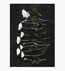 Laid Flowers Photographic Print