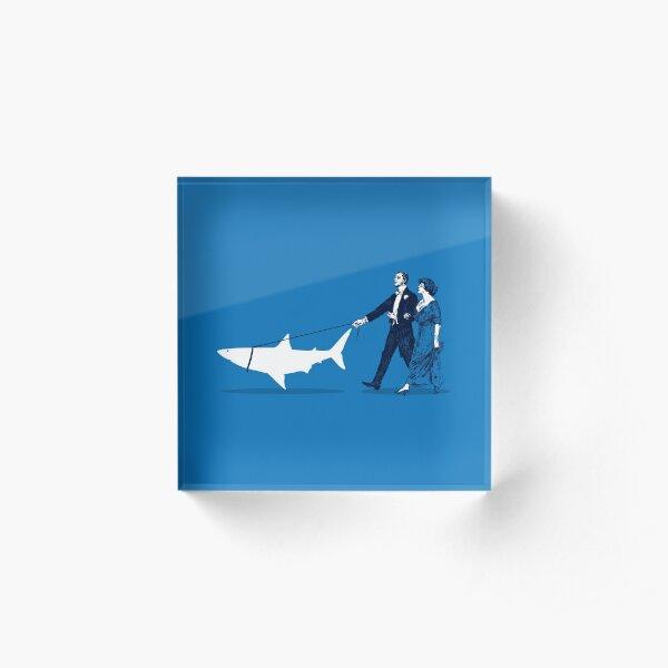 Walking the Shark Acrylic Block