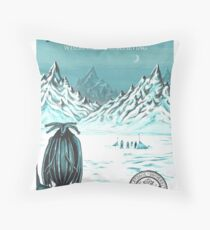 Antarctica - where seeing is believing Throw Pillow