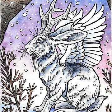 Winged Jackalope in Winter Plumage by OMEGAFAUNA