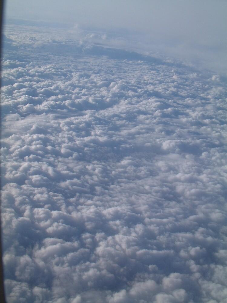 big sky by optout