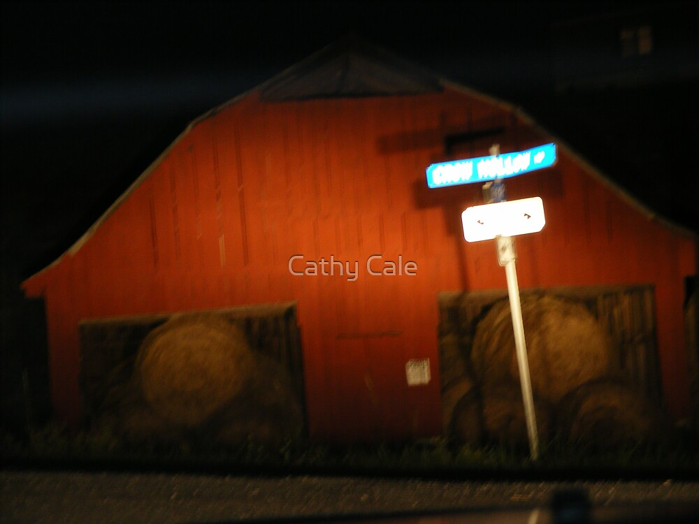 A Barn in the Headlights!! by Cathy Cale