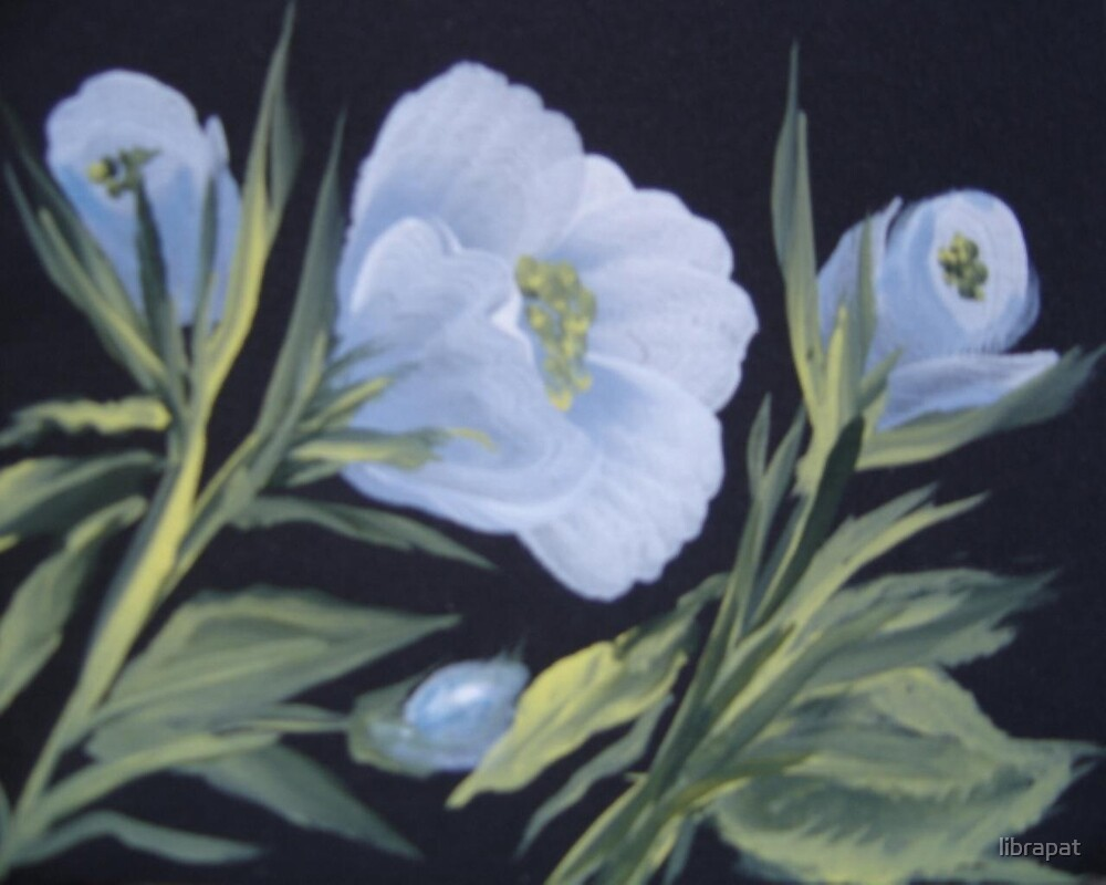 Handpainted Blue and White Rose by librapat
