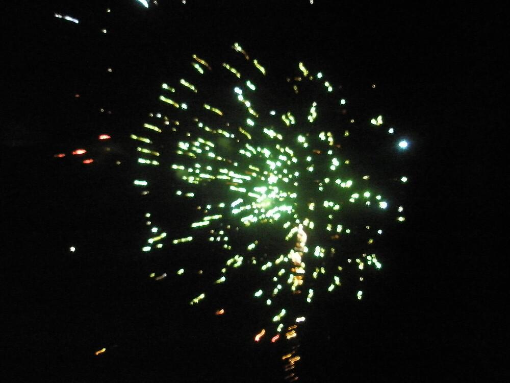 Celebrations by Melissa Park