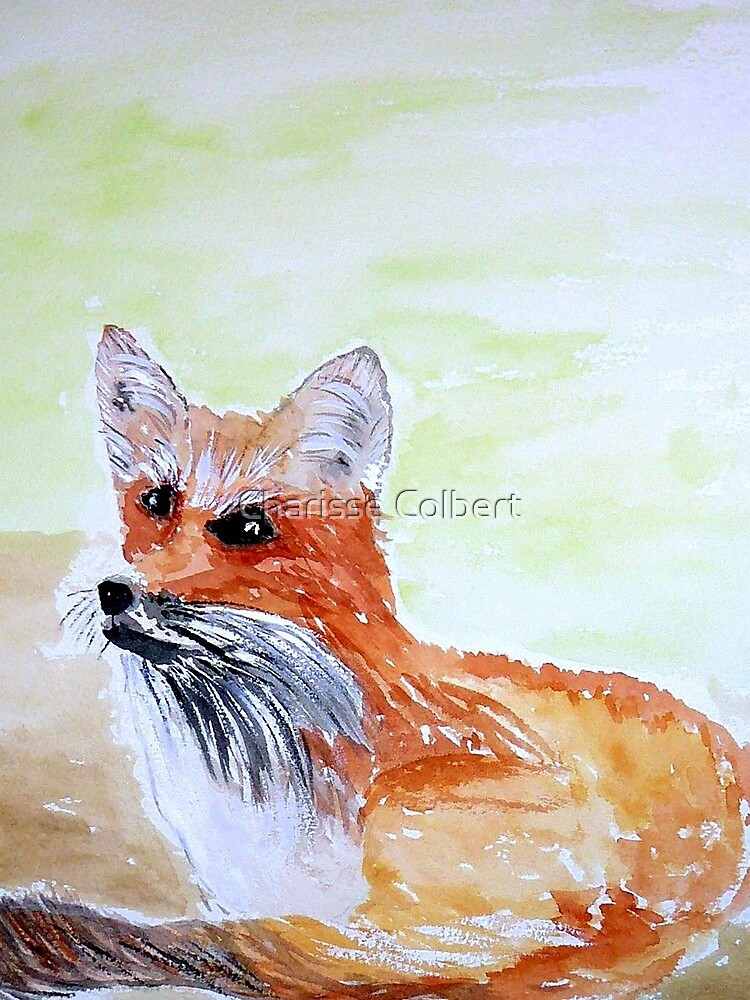 Red Fox by charissecolbert