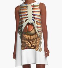 Funny t-shirt with the inner organs of the human body in your anatomy A-Line Dress