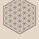 Hex Outline Flower of Life (light background) by hexagrahamaton