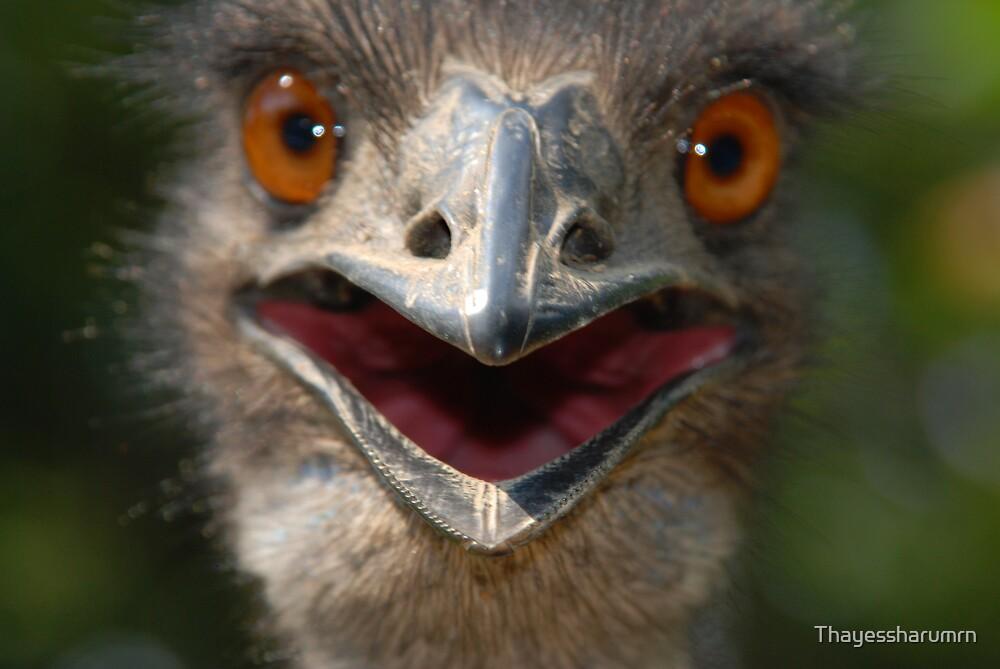 Psycho Bird by Thayessharumrn