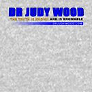 Dr Judy Wood - The Truth is Known and Knowable (CONTRIBUTOR PRICE) by IrrefutableTV