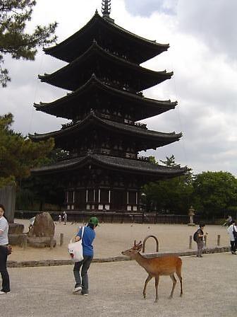 Nara Pagoda and Deer by satsumagirl