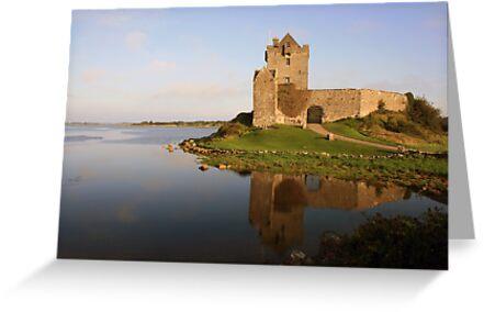 Dunguaire castle view  by John Quinn